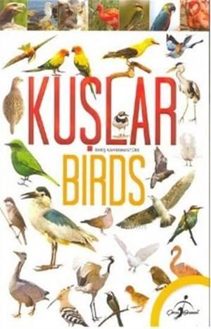 Kuşlar; Birds