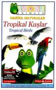 Tropikal Kuşlar - DVD