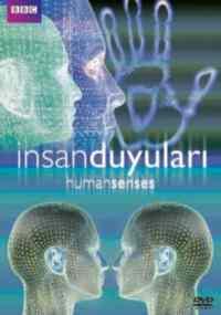 İnsan Duyuları: Dokunmak Ve Görmek - Human Senses: Touch & Vısıon