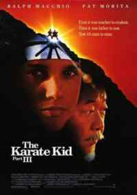 The Karate Kid-3