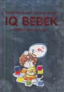 IQ Bebek - Kitap