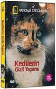 Kedilerin Gizli Yasami - DVD