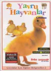 Yavru Hayvanlar-Çiftlikte