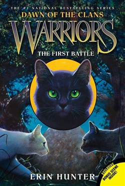Warriors Dawn of t ...