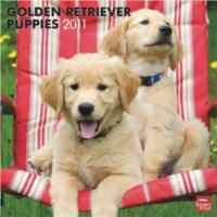 Calendar 2011 Golden Retriever Puppies