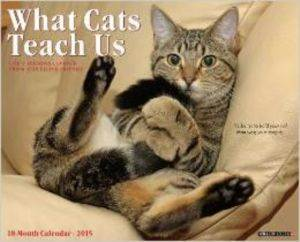 Cal 15 What Cats Teach Us 18 M ...