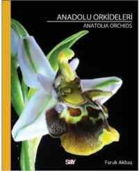Anadolu Orkideleri