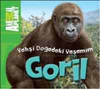 Vahşi Doğadaki Yaşamım-Goril