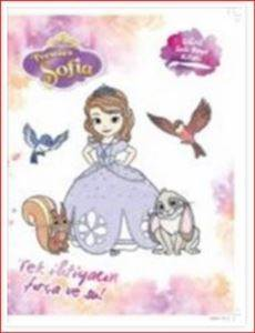Disney Prenses Sofia - Sihirli Sulu Boya Kitabı