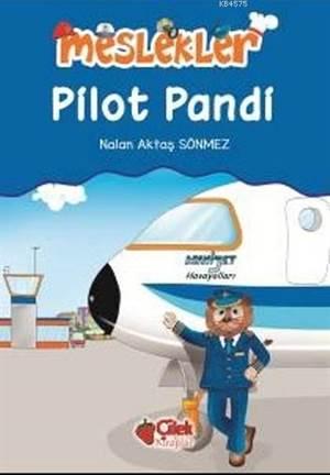 Meslekler - Pilot Pandi