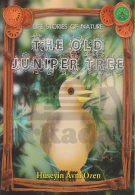 Life Stories Of Nature The Old Juniper Tree