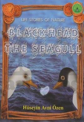 Life Stories Of Nature - Black Head The Sea Gull