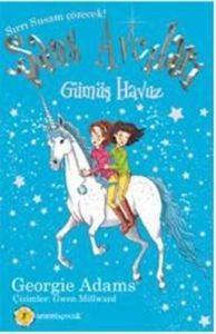 Şans Avcısı 2. Kitap Gümüş Havuz