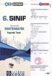 6.Sınıf Matematik -Yt-
