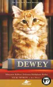 Dewey-Cep Boy