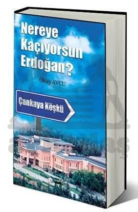 Nereye Kaçıyorsun Erdoğan?