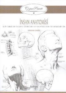 Çizim Sanatı 6 İnsan Anatomisi
