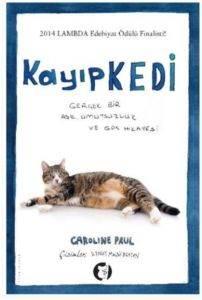 Kayıp Kedi