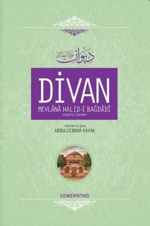 Divan Mevlânâ Halid-İ Bagdâdî (Ciltli)