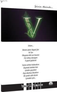 Şiirin Ötesinde - V