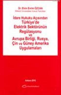 Türkiye'de Elektrik Sektörünün Regülasyonu ve Avrupa Birliği, Rusya, Çin ve Güney Amerika; İdare Hukuku Açısından