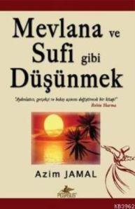 Mevlana ve Sufi Gibi Düşünmek