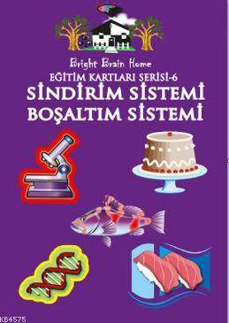 Eğitim Kartları Serisi 6 Sindirim Sistemi Boşaltım Sistemi