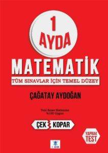 1 Ayda Matematik