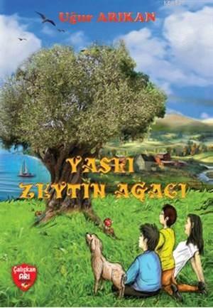 Yaşlı Zeytin Ağacı; (+9 Yaş)