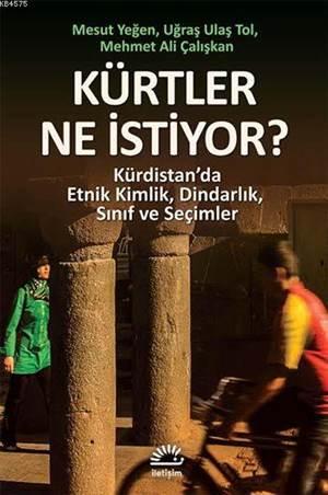 Kürtler Ne İstiyor?; Kürdistan'da Etnik Kimlik, Dindarlık, Sınıf Ve Seçimler
