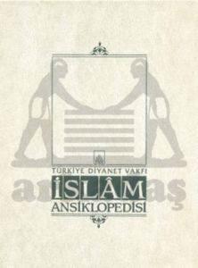 İslam Ansiklopedisi 29. Cilt (Mekteb - Mısır Mevlevihanesi)