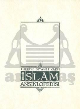İslam Ansiklopedisi 41