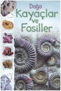 Doğa Kayaçlar ve Fosiller