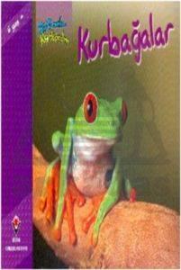 Bir Zamanlar Korkardım - Kurbağalar