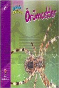 Bir Zamanlar Korkardım - Örümcekler
