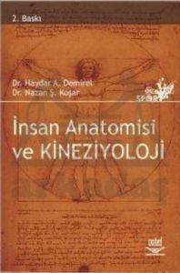 İnsan Anatomisi ve Kineziyoloji