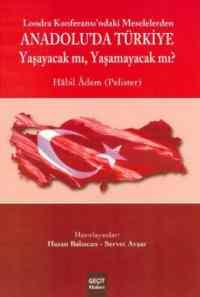 Lozan Konferası'ndaki Meselelerden Anadolu'da Türkiye
