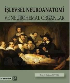 İşlevsel Neuroanatomi Ve Neurohemal Organlar