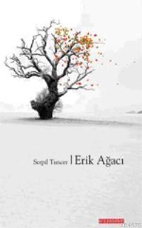 Erik Agaci
