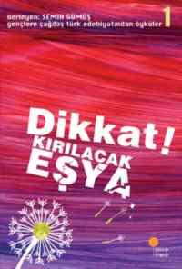 Dikkat Kırılacak Eşya Gençlere Çağdaş Türk Edebiyatından Öyküler 1