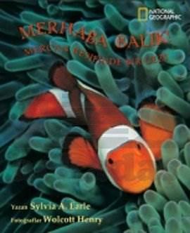 Merhaba Balık Mercan Resifinde Bir Gezi