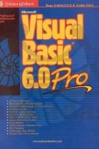 Visual Basic 6.0 Pro.