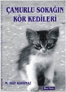 Çamurlu Sokağın Kör Kedileri