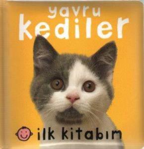 İlk Kitabım Yavru Kediler