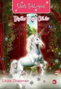 Sihirli Tekboynuz Hayaller Gerçek Olabilir 2 Kitap