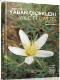 Türkiyenin Yaban Çiçekleri