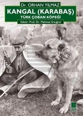 Kankal ( Karabaş )Türk Çoban Kopeği