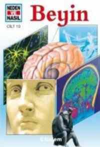 Neden ve Nasıl Cilt 10 - Beyin