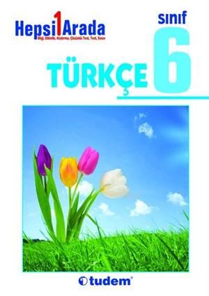 6.Sınıf Hesi Bir Arada Türkçe Konu Anlatımlı