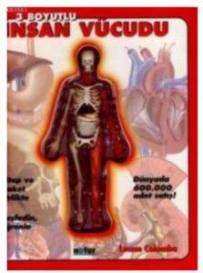 3 Boyutlu İnsan Vücudu